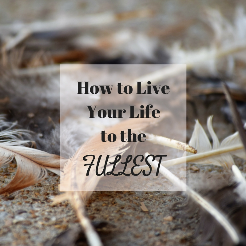 live your life to the fullest essay